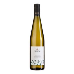 Sauvignon Blanc 2019 – H. Lun